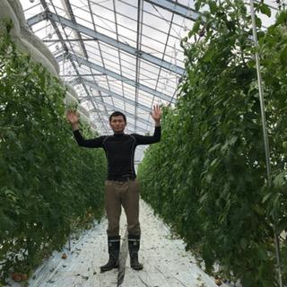 田中農園 田中一成 宍粟市 たかがトマトされどトマト