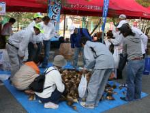 宍粟市商工会青年部のブログ-さつマラ1